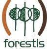Seminário Forestis 2013