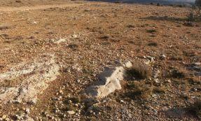 Solos naturais para o aparecimento da trufa